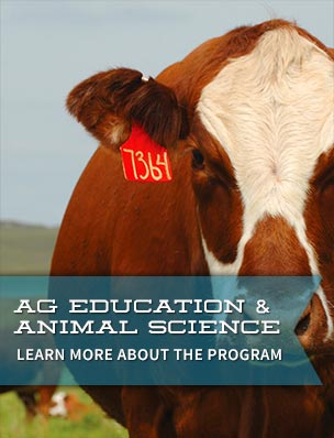 Agriculture Education & Animal Science