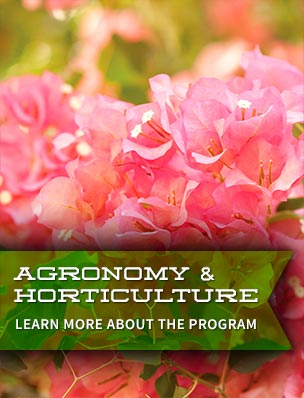 Agronomy & Horticulture
