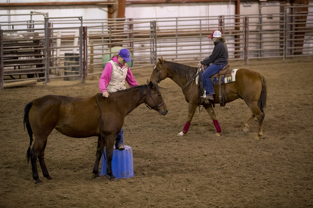 NCTA equine students work with their horses at the indoor arena of the Livestock Teaching Center. (Craig Chandler / NCTA photo)