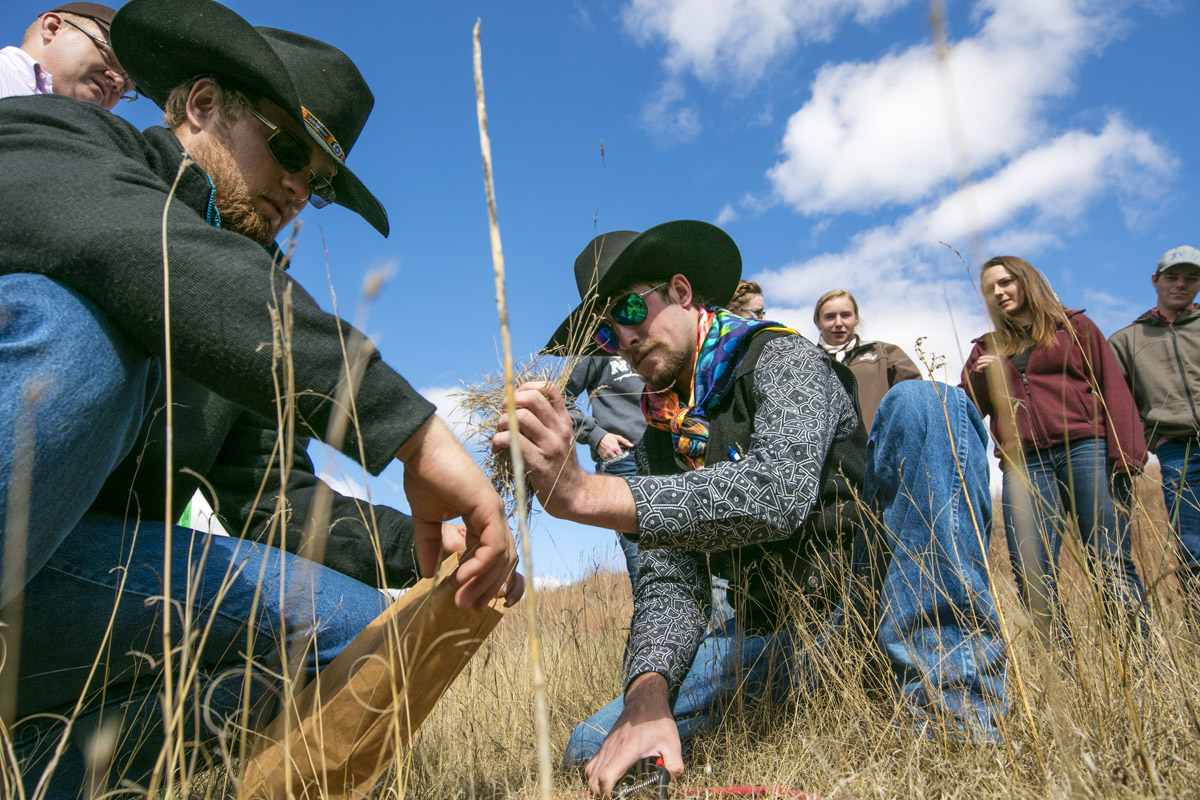 Students assessing quality of pasture for a livestock management course at the Nebraska College of Technical Agriculture. (Craig Chandler / University Communication Photo)