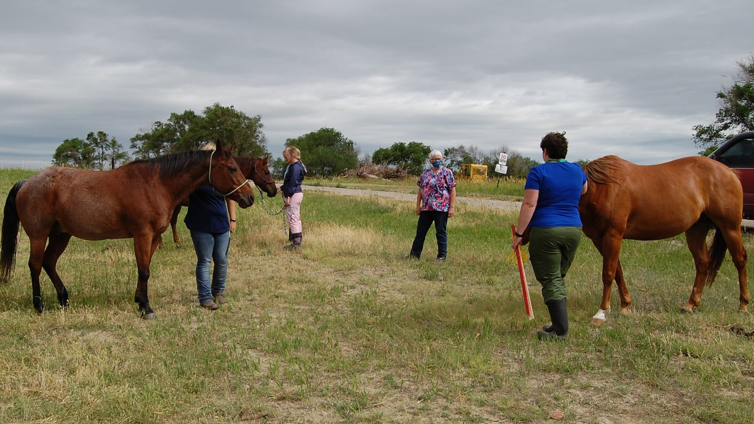 NCTA Vet Tech students have an outdoor lab session on Feeding the Equine Patient. NCTA uses physical distancing and face masks for indoor classes. (C. Barnhart / NCTA Photo)