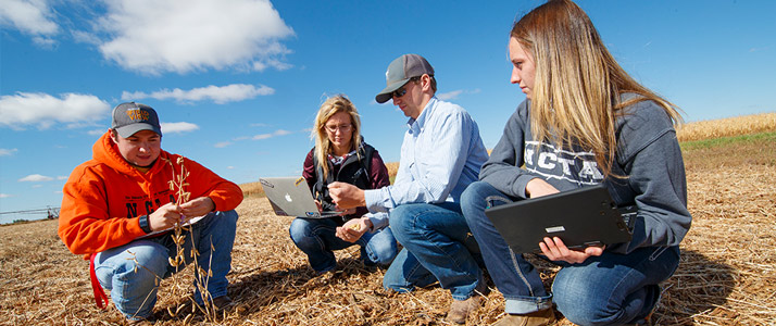 Students sitting in field looking at data