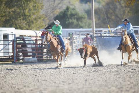 NCTA Aggie team ropers Tom Percival, header at right, and Trey Baum, heeler, will compete again April 14-15 in Lincoln. (Craig Chandler / University Communication)