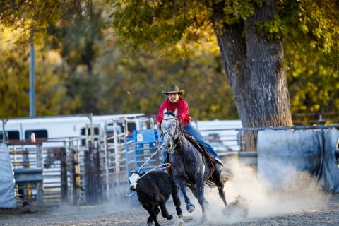 Aggie Rodeo is a popular competitive team at NCTA. (Craig Chandler / NCTA Photo)