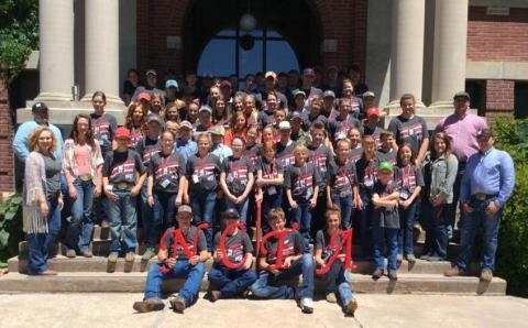 The 2017 NCTA Standard of Excellence Livestock Judging Camp drew 80 participants, shown at Ag Hall. (T. Smith/NCTA Photo)