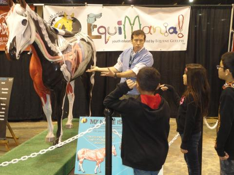 Glenn Jackson, DVM, explains the anatomy of a horse at the FEI World Cup equine expo in Omaha in May. Veterinary Technology students from the Nebraska College of Technical Agriculture assist during the expo. (Photo by Jackie Bellamy-Zions, Equine Guelph)