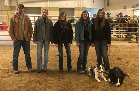 NCTA students gave a stock dog demonstration in February at the Nebraska Cattlemen's Classic in Kearney. (Courtesy photo)