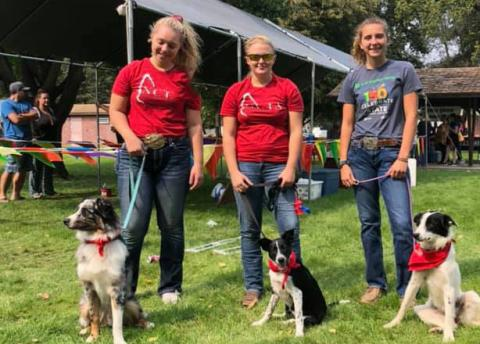 Student volunteers with the NCTA Stock Dog Team gathered at City Park for Curtis Fall Festival, 2020. (NCTA photo)