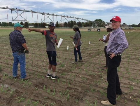 Rwandan scholars work at the University of Nebraska Panhandle Research and Extension Center in Scottsbluff in 2017. PREC Director Jack Whittier is at right. (Courtesy photo)