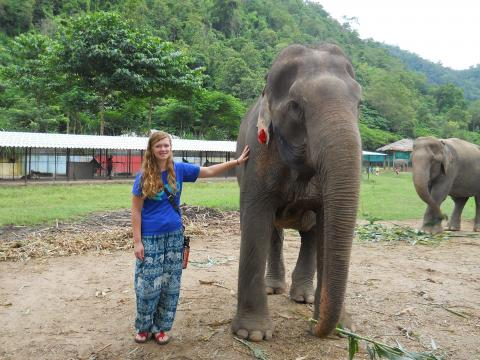 McKenzie Beals, 2015 graduate of NCTA, gained hands-on experience with rescue elephants as part of her experience in Thailand  (Photo © 2016 Loop Abroad)