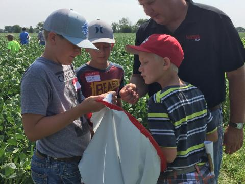 Students use an insect net to catch insects found in crops at the NCTA field laboratory. (Kathy Burr, Nebraska Extension photo)