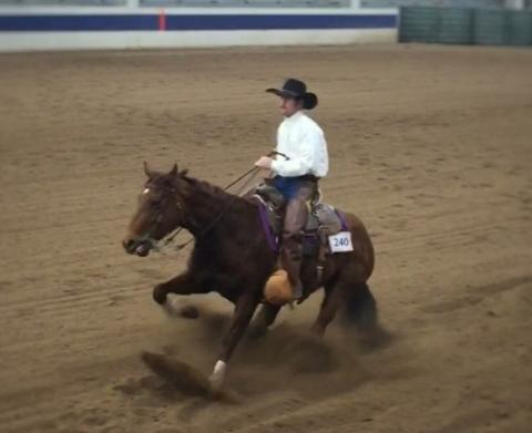 NCTA Ranch Horse Team member Rio McGinley won collegiate reining at a collegiate show in Cheyenne. (Courtesy Photo)