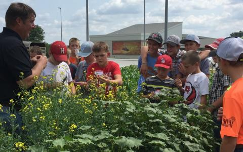 Dr. Brad Ramsdale, agronomy professor at the Nebraska College of Technical Agriculture in Curtis, discusses plant and weed identification at the Youth Agronomy Field Day in 2017. Students, ages 8-19, are encouraged to register by August 3 for the 2018 event. (Nebraska Extension photo)