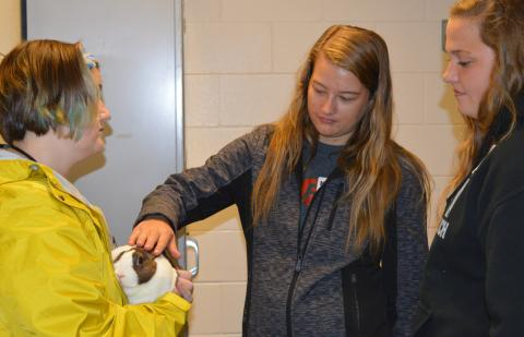 A rabbit at the Veterinary Technology complex drew attention at NCTA Discovery Day in October. Students can tour campus and see academic programs at the Nebraska College of Technical Agriculture in Curtis again on Monday, March 4. (Griffiths/NCTA Photo)