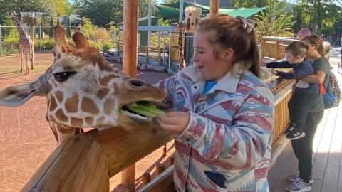 Emma Hollenback, a Nebraska College of Technical Agriculture Aggie feeds a giraffe at the Children's Zoo in Lincoln. The Student Technicians of Veterinary Medicine Association enjoyed a field trip over fall break. (Photo by Melody MacDonald)