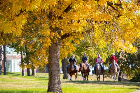 Autumn provides a scenic ride near the NCTA Vet Tech complex on campus. (Chandler/NCTA Photo)